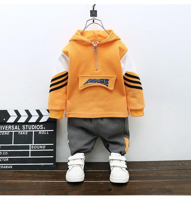 Toddler Hoodie and Pant...