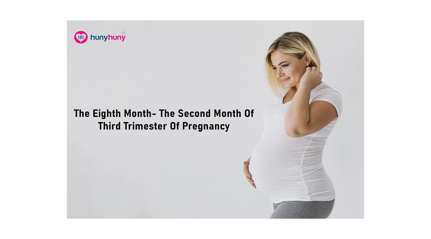The Eighth Month - The Second Month Of Third Trimester Of Pregnancy